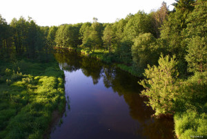 река Бобр